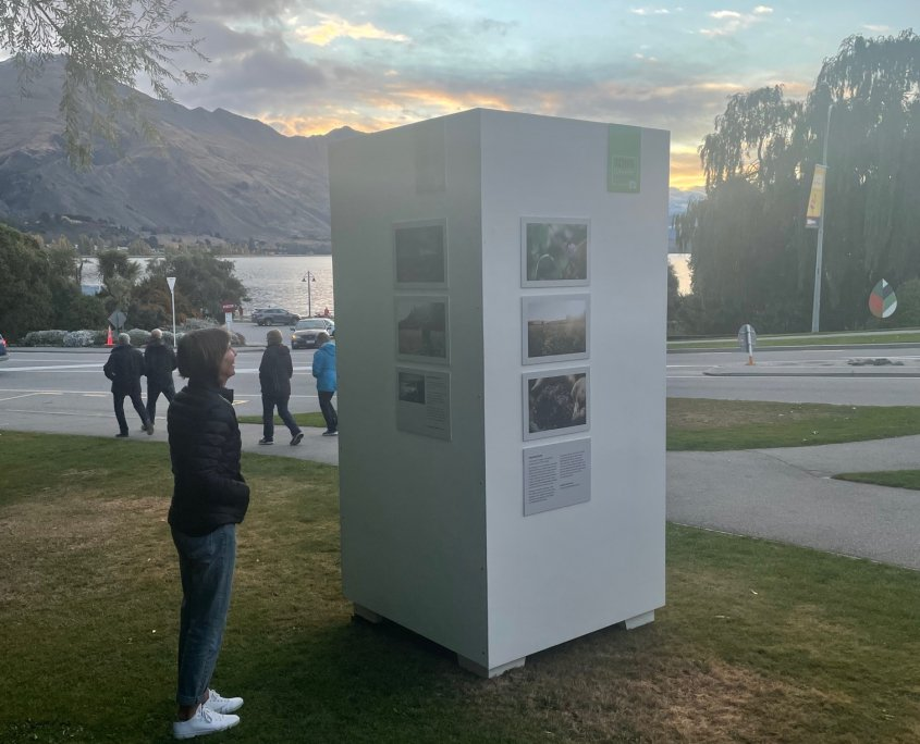 Through the Eye of Wānaka outdoor exhibition part of Festival of Colour 2021