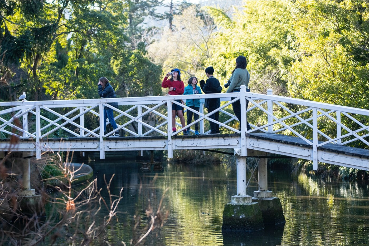 Group of students learning to look for photographic subjects guided by expert photographers. Image credit Raymond Sagapolutele